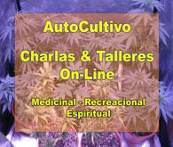 AutoCultivo de Cannabis