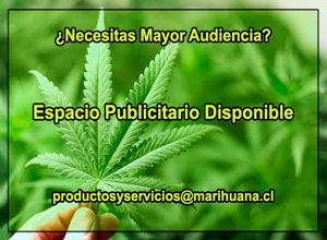 Espacio Publicitario Disponible